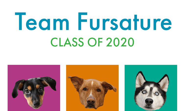 Team Fursature class of 2020 with 3 dogs