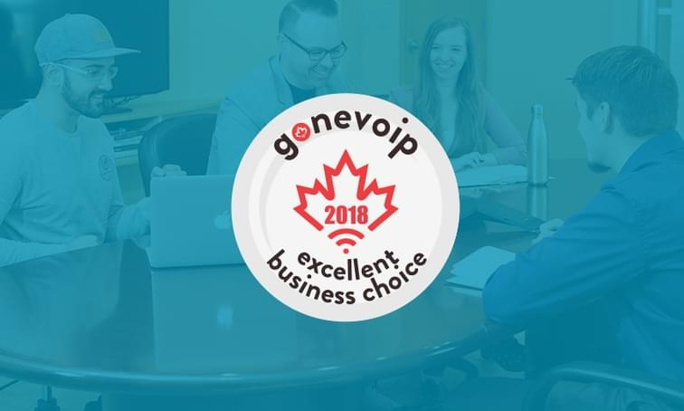 Gonevoip 2018 excellent business choice award