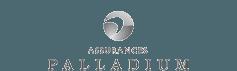 Palladium Insurance