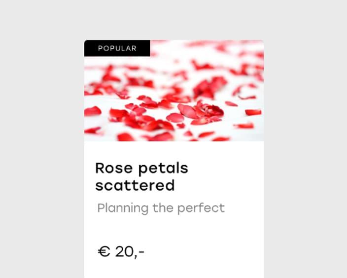 Rose petals scattered 2x
