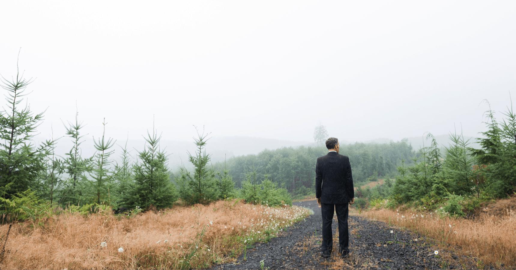 Mann im Anzug steht im Wald Lichtung