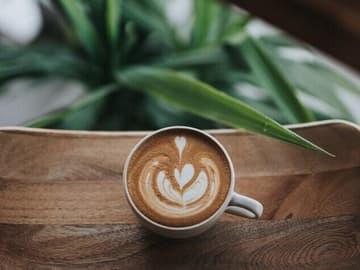 Foto von Kaffee mit Milchschaum Herz grüne Pflanze