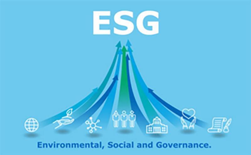 Embedded ESG image placeholder