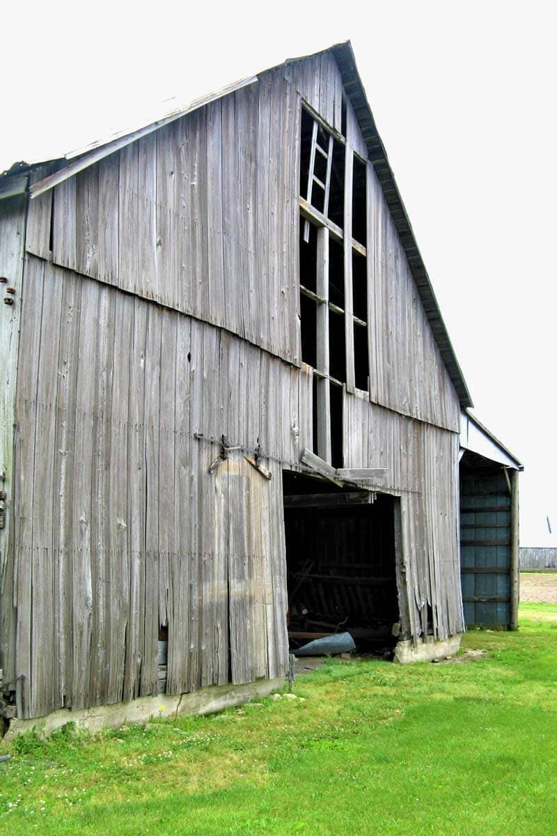 Cypress wood barn under review for reclaiming the wood to use for flooring.