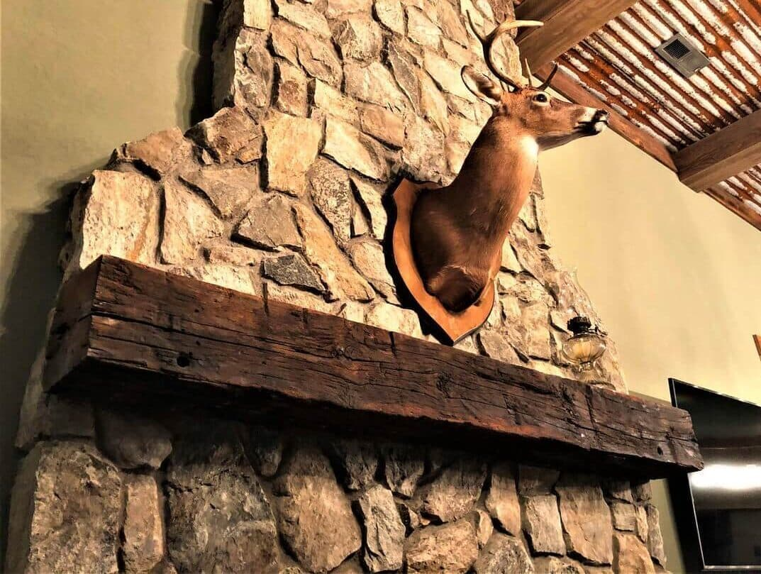 Hand hewn Beech Mantel with natural oil finish with deer mounted above.