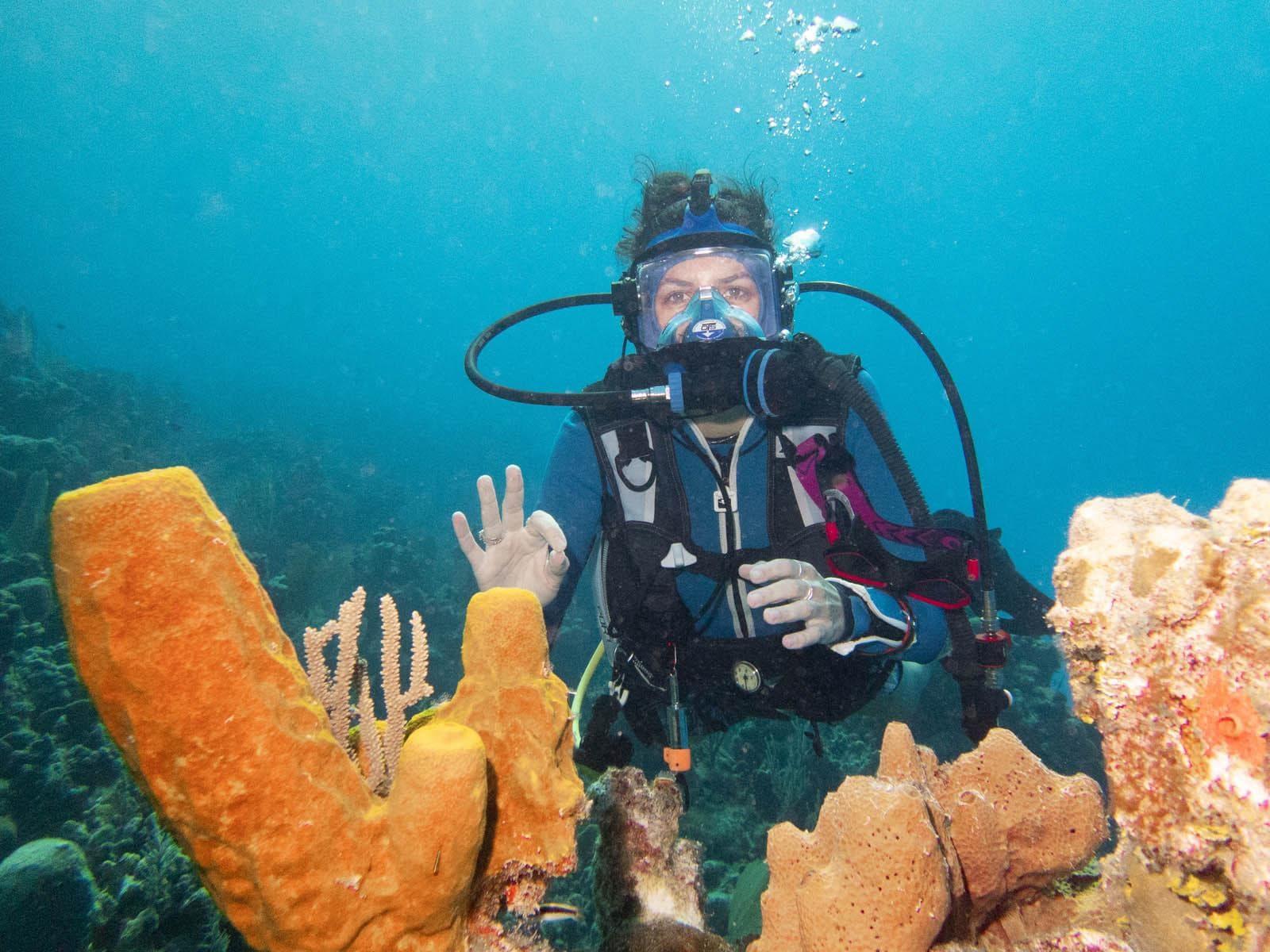 CCMI Maisy With Sponges