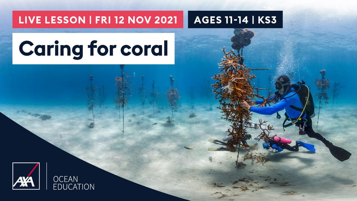 Caring for Coral KS3 CL2021 Slate