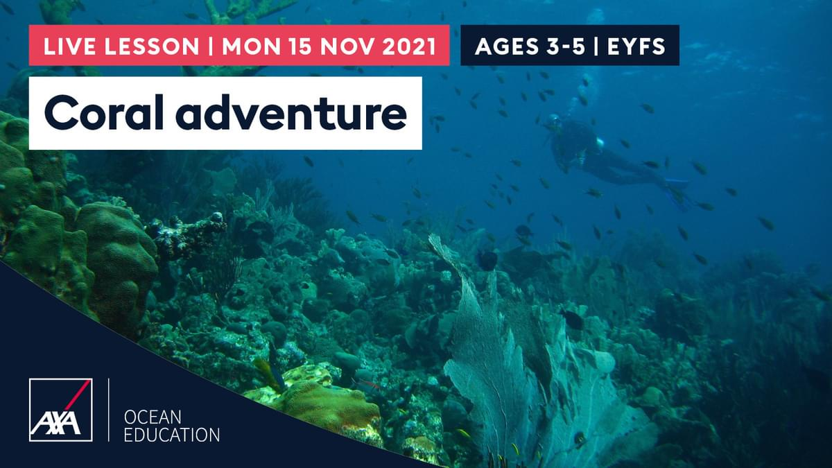Coral Adventure EYFS CL2021 Slate