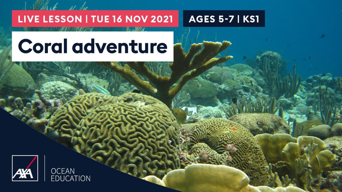 Coral Adventure KS1 CL2021 Slate
