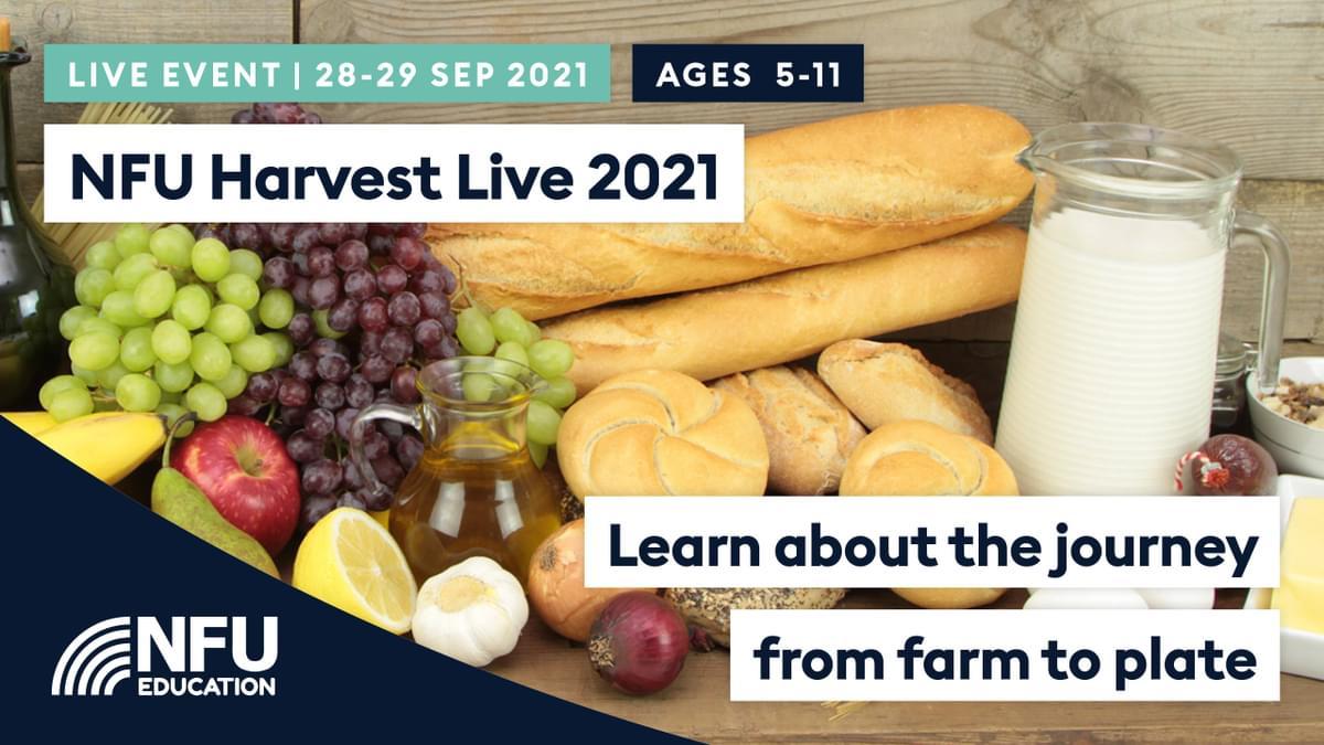 HARVEST Live Event Slate