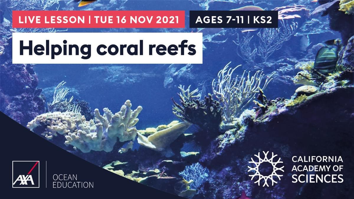 Helping Coral Reefs KS2 CL2021 Slate