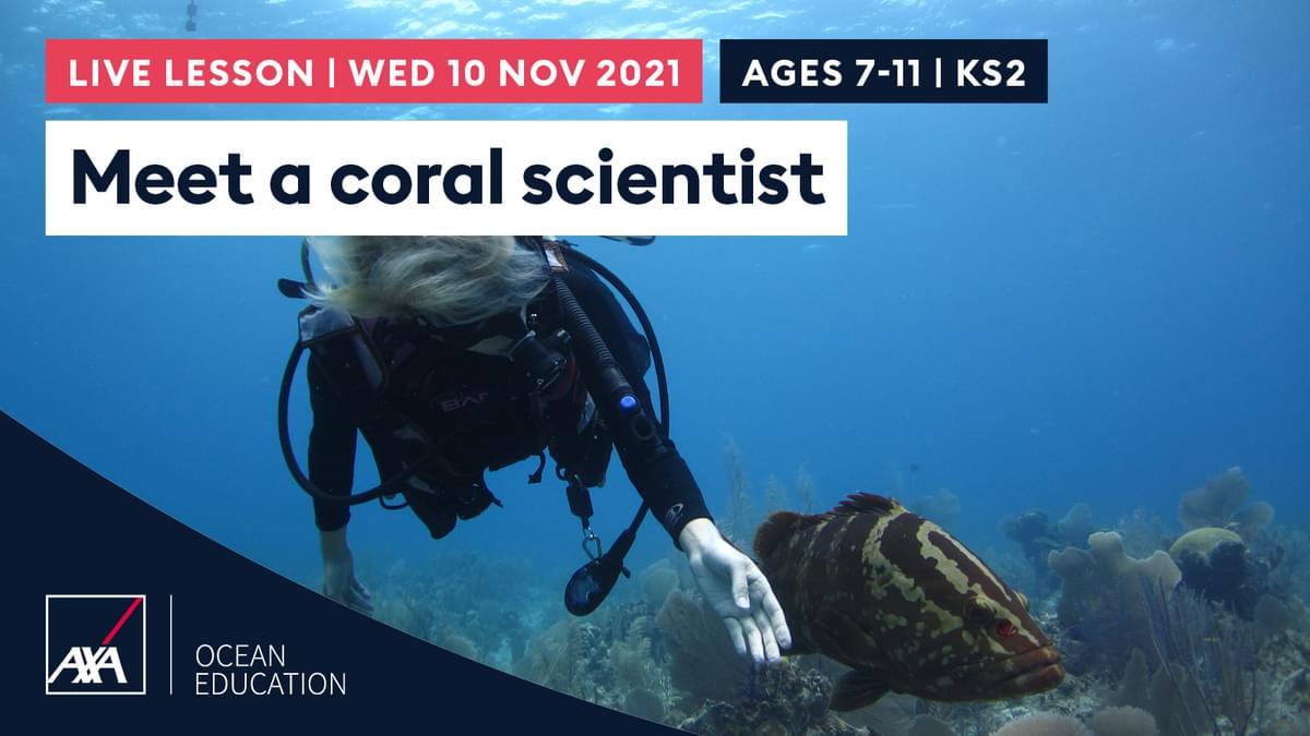 Meet a Scientist KS2 CL2021 Slate