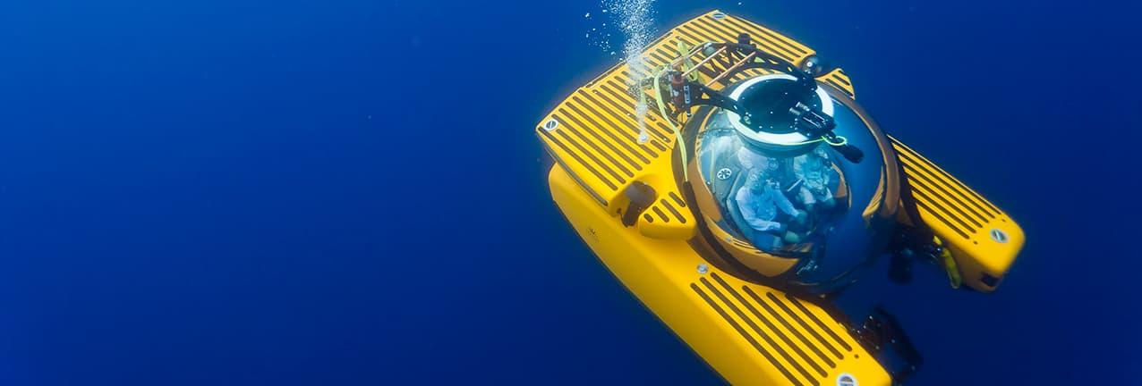 Submarine Live 2019 Yellow Sub Thumb