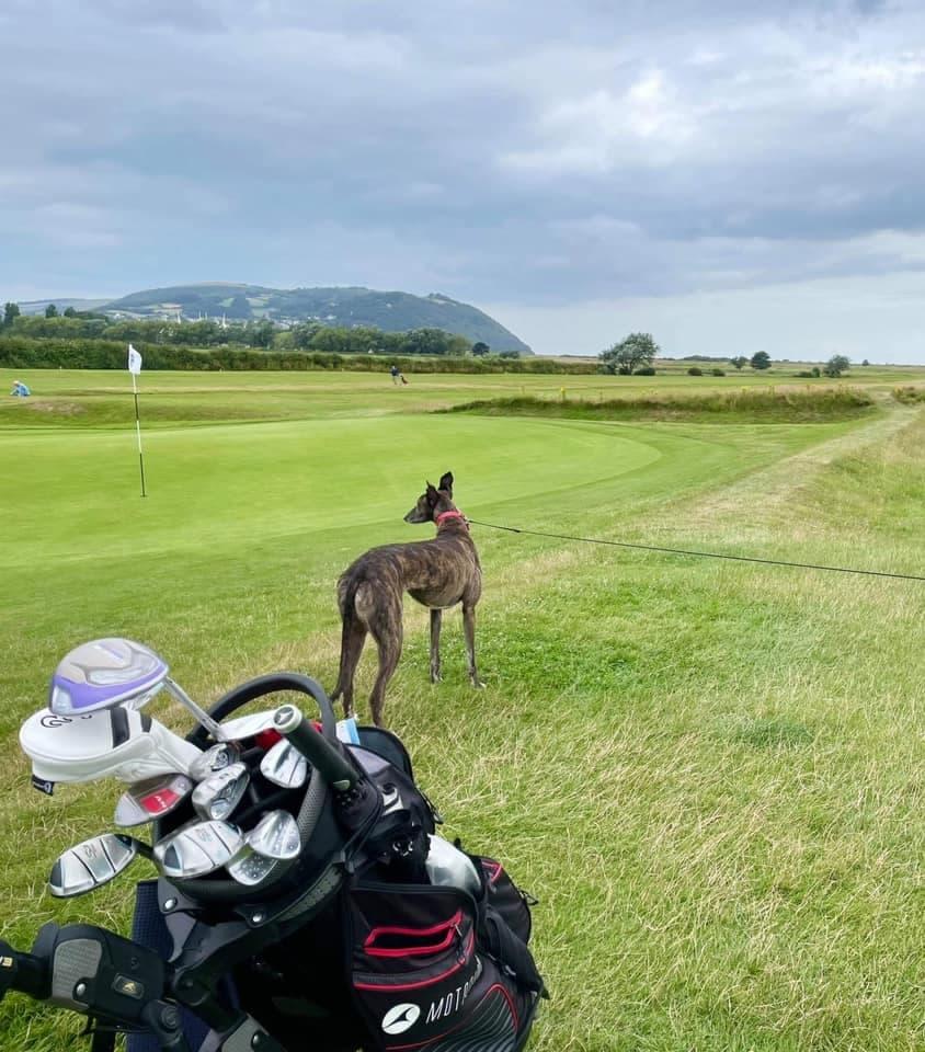 Pauline plays golf!