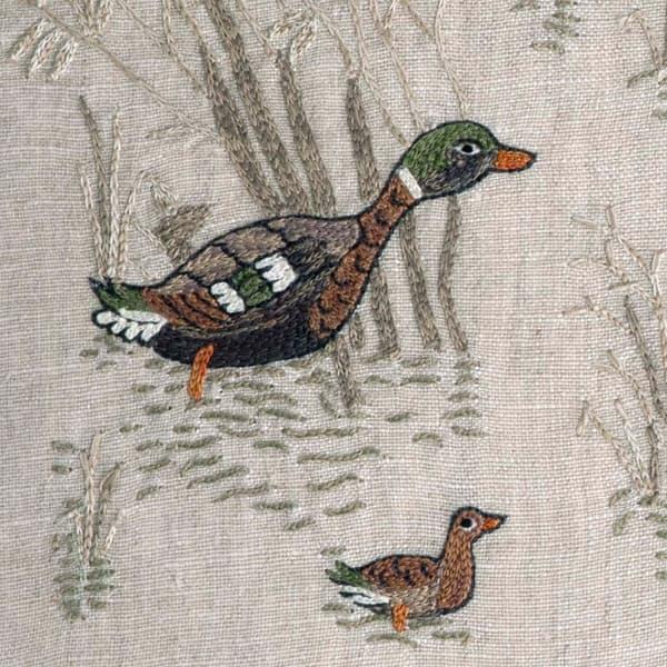 C980 V1 – Marsh ducks