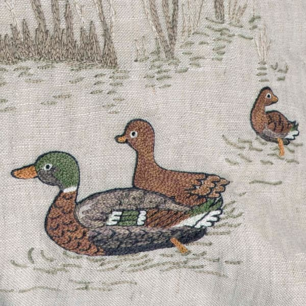 C980 V2 – Marsh ducks