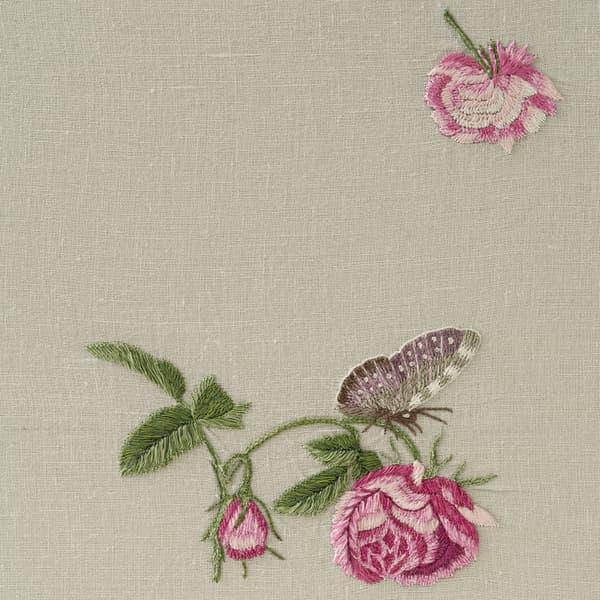 F421 V4 – Hermosa roses