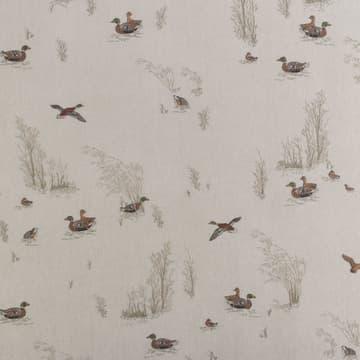Marsh ducks