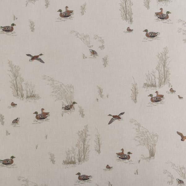 F980 V1 – Marsh ducks