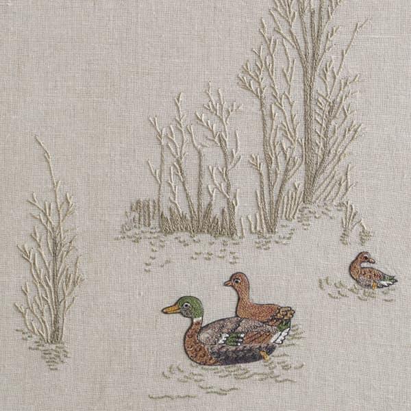 F980 V3 – Marsh ducks