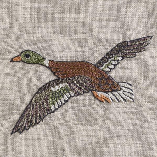 F980 V4 – Marsh ducks