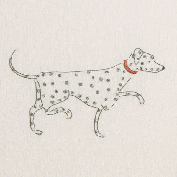 Fd713 D3 – Dogs on Parade
