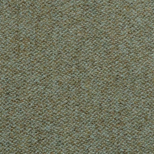 Fwp100 13 – Bampton in moss