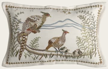 Pheasants & birds