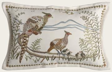 Pheasants & birds