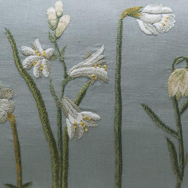 C422B – Narcissus