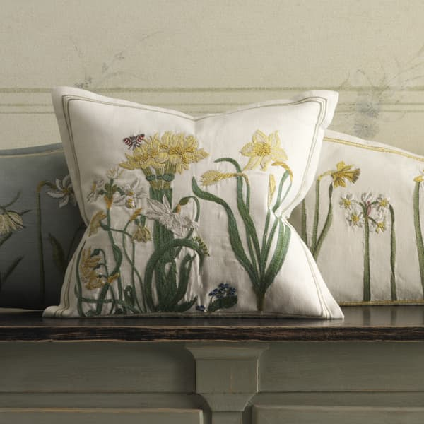 Ct25 144 – Yellow agapanthus