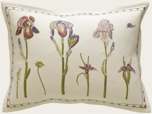 C401 – Irises