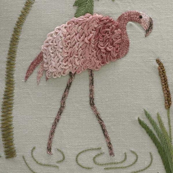 C660A Cropped – Flamingos