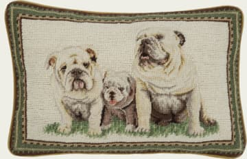 Three bulldogs