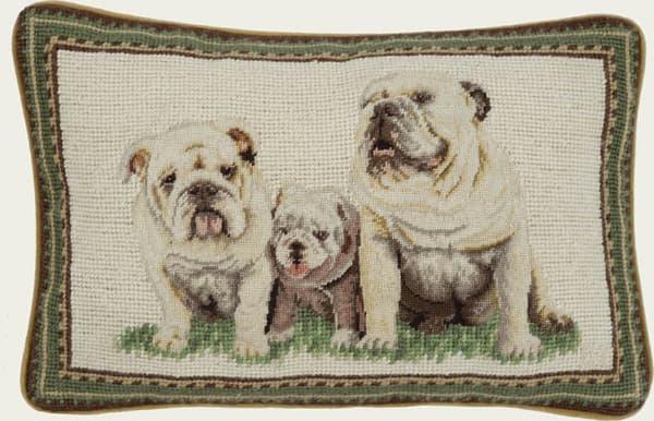 Image 429 – Three bulldogs