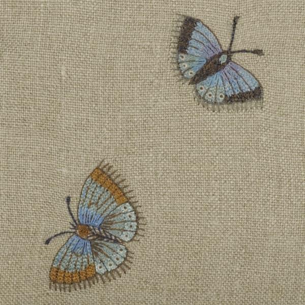 C571 1 – Butterflies