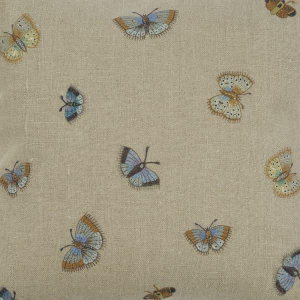 C571 2 – Butterflies