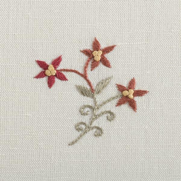 F361 R Berry – Wild Flower