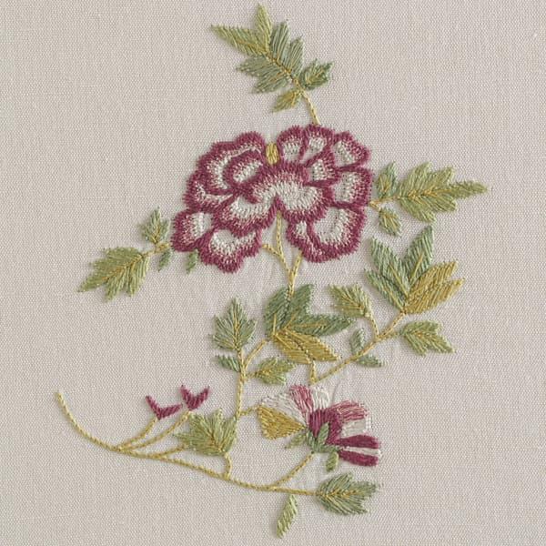 F462 R V5 – Dianthus and Dhalia sprig