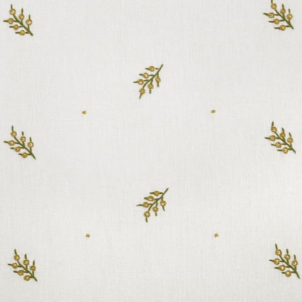 Fn022 B Detail – Mistletoe