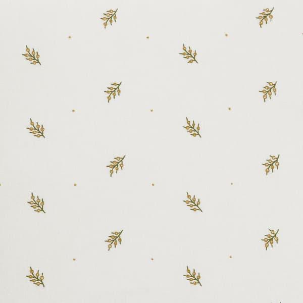 Fn022 B – Mistletoe