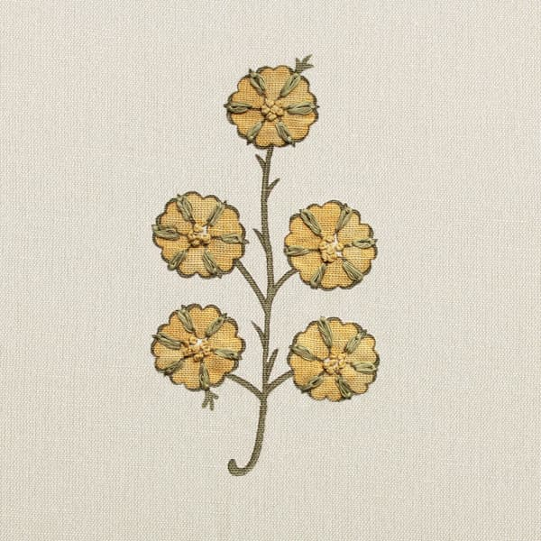 FN039 in Faded Yellow – Gardenia