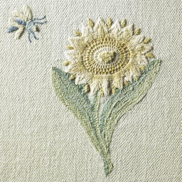 Sunflower Detail 1 5 – Sunflower