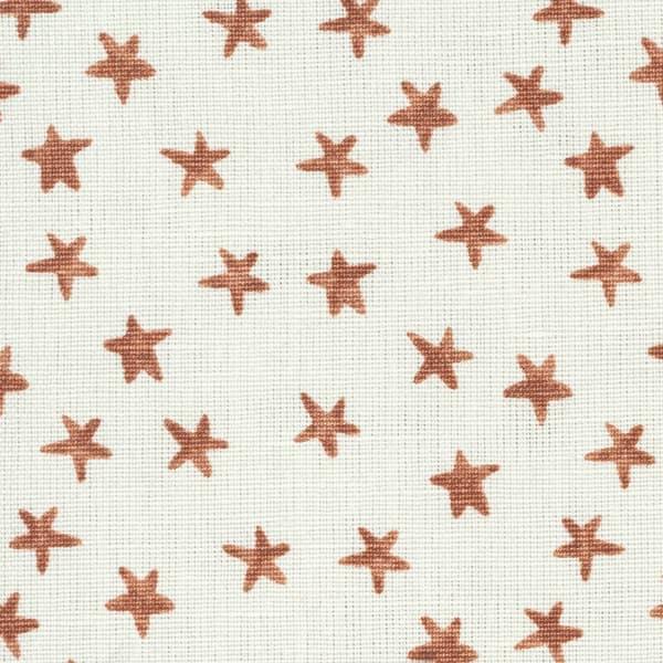 Fp1405 Detail – Stars in rust