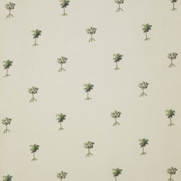 Provence palm tree