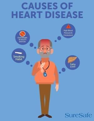 Causes of heard disease infographic