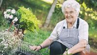 SureSafe Woman Gardening Outdoors with FallSafe