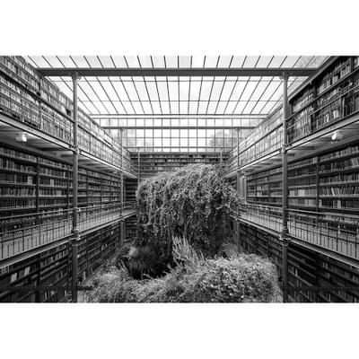 3  Tanja Deman Museum Library Series Temples Of Culture 2014
