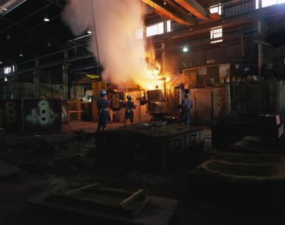 Metal Plant 01