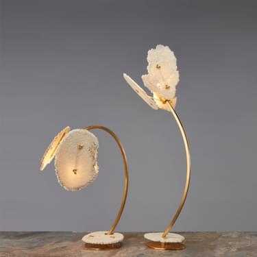 Coral Sun Shop Lamps